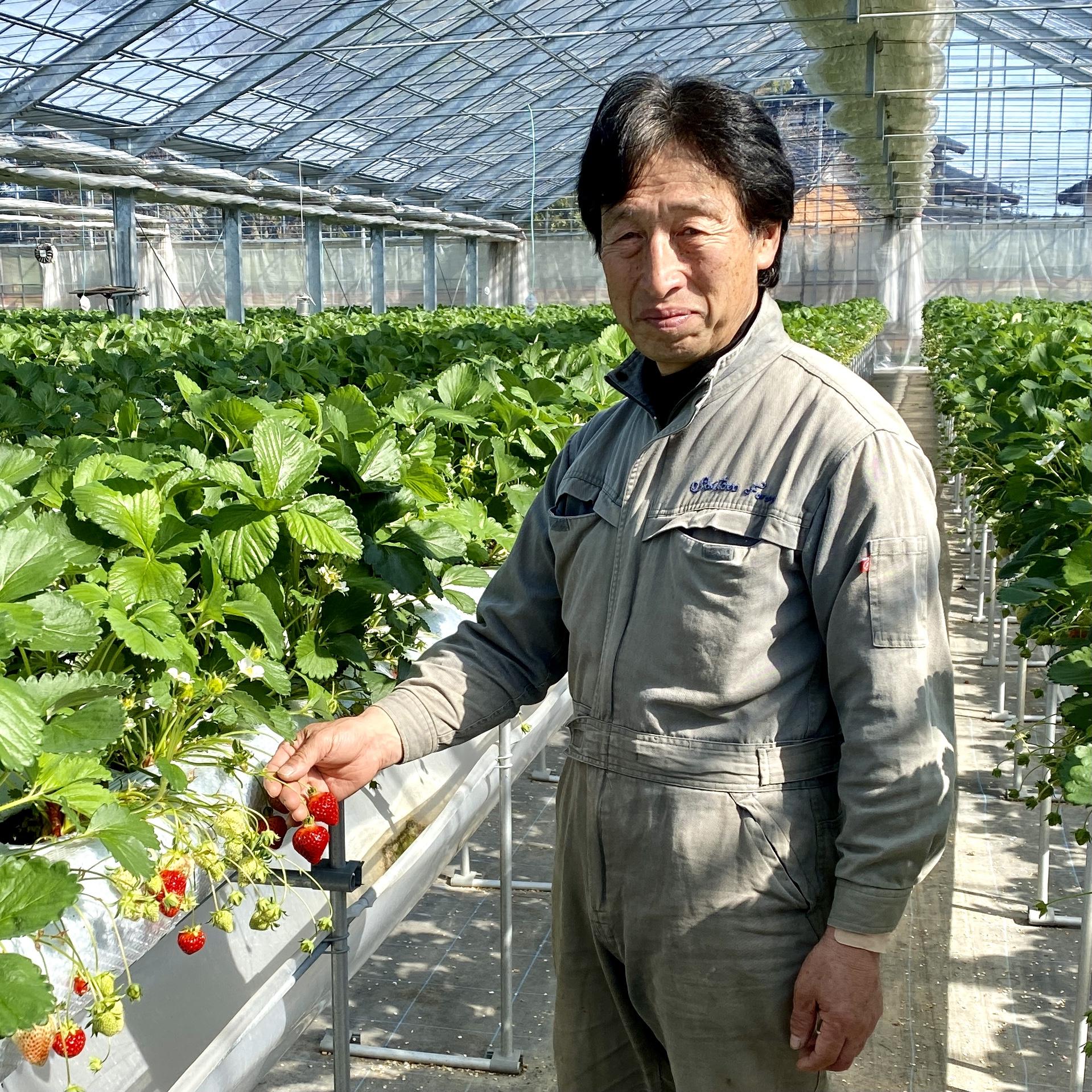 (有)斎藤農園